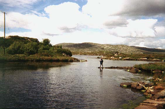 Ireland West Game Angling